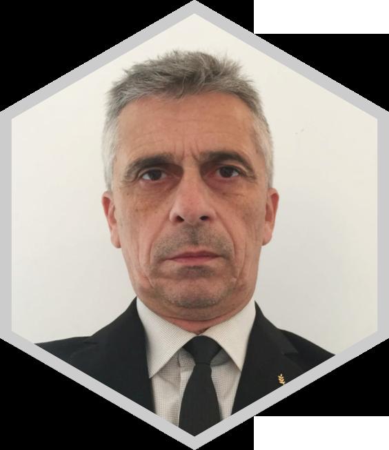 Professor Liviu Chirigiu PhD